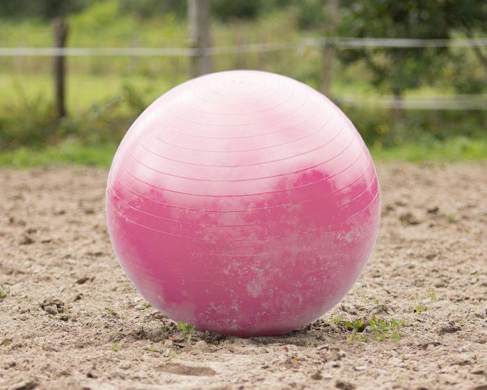 QHP Pferdefußball