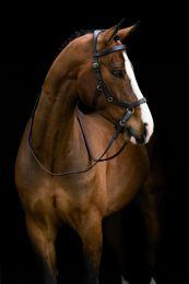 Horseware Rambo Micklem Rubber Reins Horse Braun