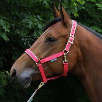 Bucas  Halfter Dublin Pony Paradise Pink