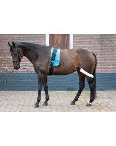 Harry's Horse Lungenhilfen
