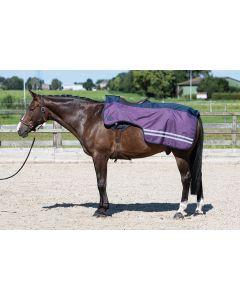 Harry's Horse ausreitdeckesblatt 0gr Vlies