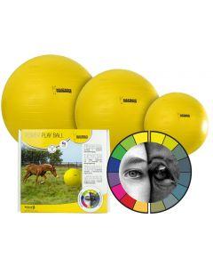 Hofman Maximus Power Spielball 65cm