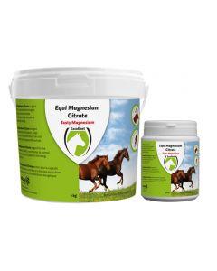 Hofman Equi Magnesiumcitrat 500 gr