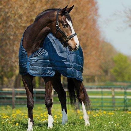 Winterdecken von 165cm (Pferd)